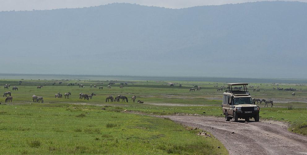 Africa safari car hire in Uganda